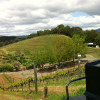 My Sonoma Getaway
