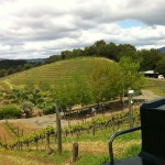 Benziger Winery