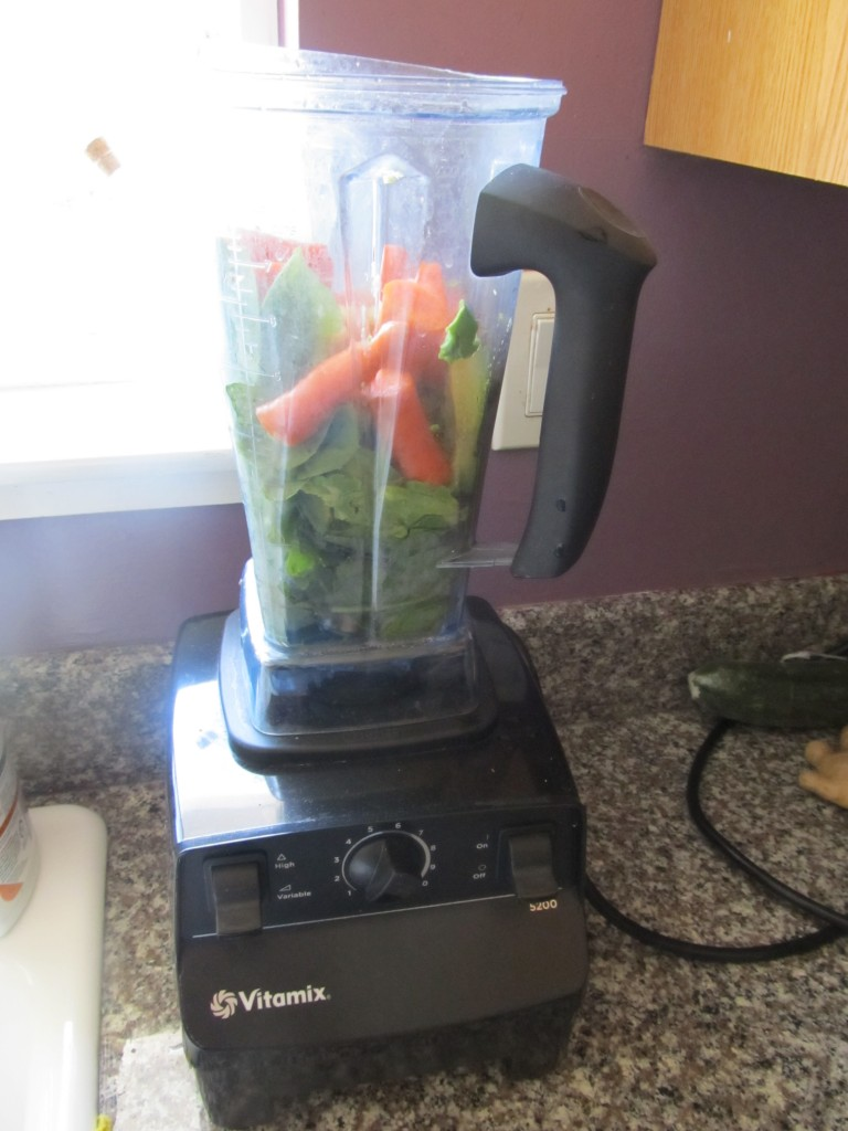 Ingredients in Vitamix