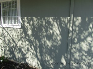 Crabapple Tree Shadows